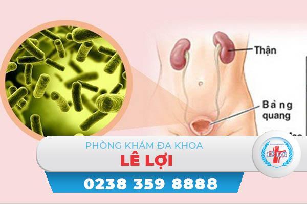 Nguyên nhân viêm đường tiết niệu